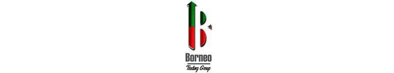 Análisis sobre Borneo Trading Group